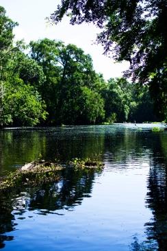 Santa Fe River 2